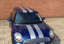 Silver Viper Stripes to Mini